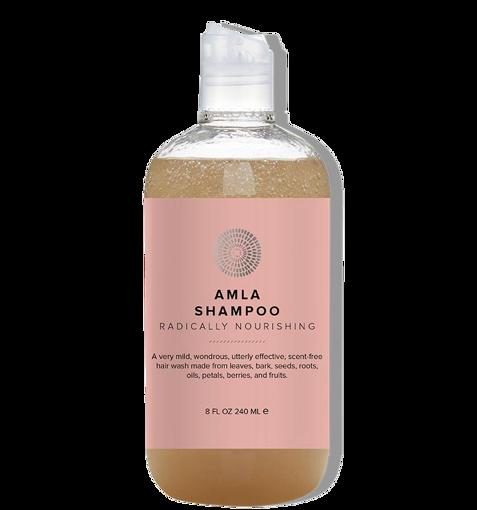 Hairprint Amla Shampoo